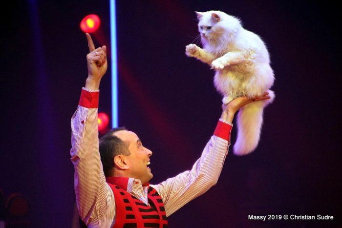 Festival du cirque en Val de Loire