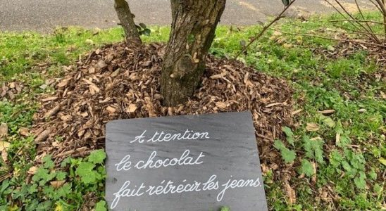 Mireille et ses ardoises (Photo France Bleu Touraine)